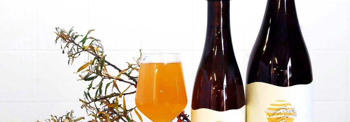 Kräute und Bier